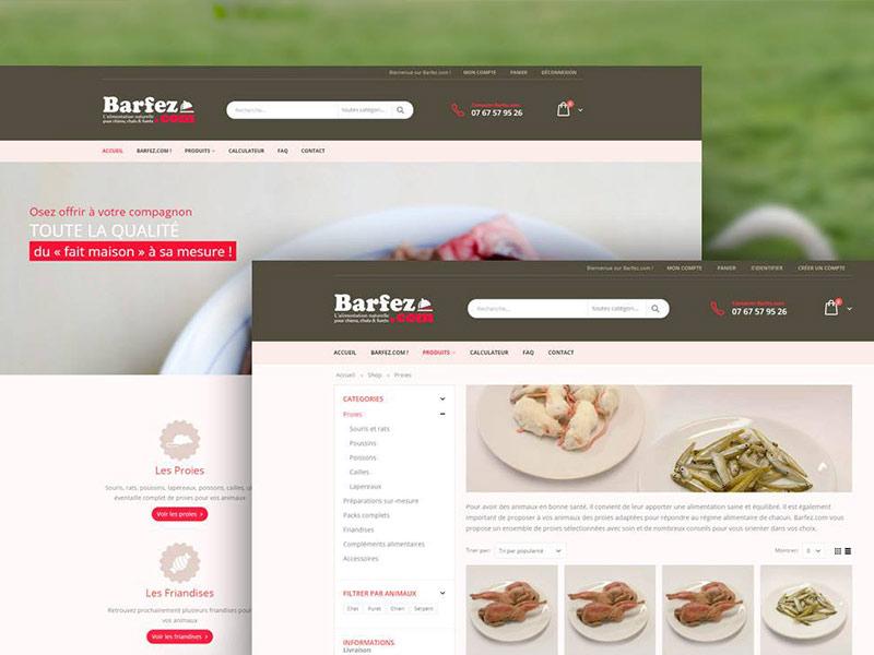 Site Internet Barfez